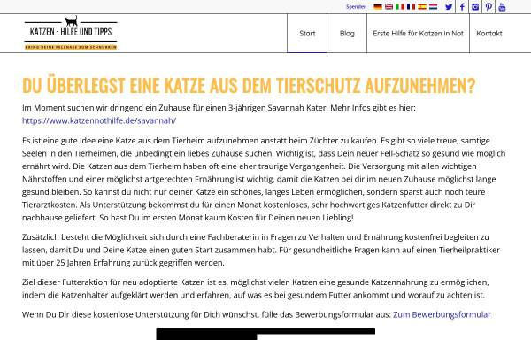 Vorschau von www.katzennothilfe.de, Felidae - Tierschutzverein und Katzennothilfe e.V.