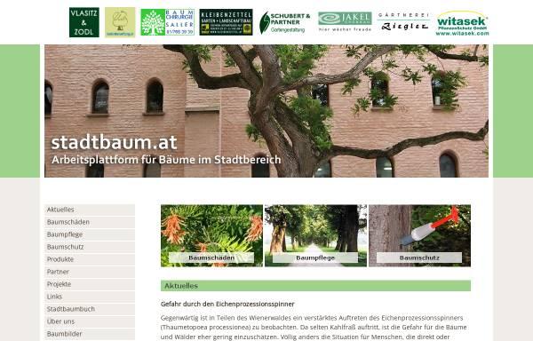 Vorschau von www.stadtbaum.at, Arbeitsplattform für Bäume im Stadtbereich [stadtbaum.at]
