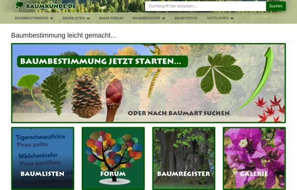 Vorschau von www.baumkunde.de, Baumbestimmung leicht gemacht