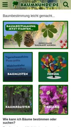 Vorschau der mobilen Webseite www.baumkunde.de, Baumbestimmung leicht gemacht