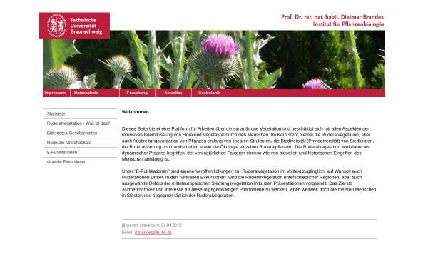 Vorschau von www.ruderal-vegetation.de, Ruderalvegetation