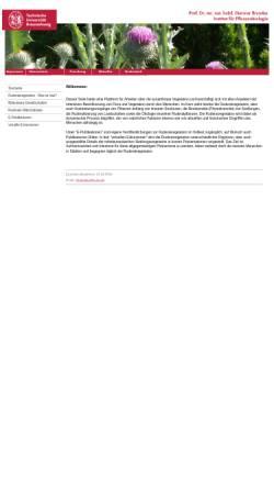 Vorschau der mobilen Webseite www.ruderal-vegetation.de, Ruderalvegetation