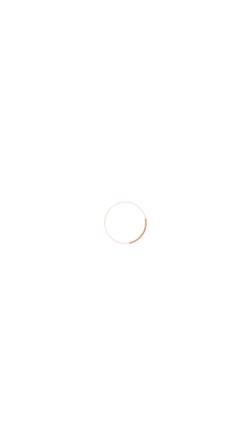 Vorschau der mobilen Webseite www.agentur-puenktchen.de, Agentur Pünktchen
