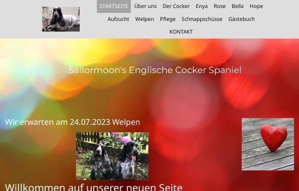 Vorschau von www.spiech.de, Sailormoon's