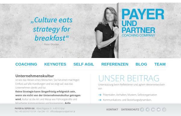 Vorschau von www.payerundpartner.at, Payer & Partner GmbH