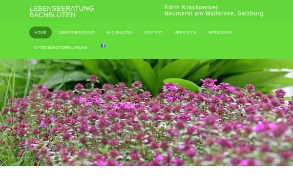 Vorschau von www.seelenraum.at, Edith Krackowizer