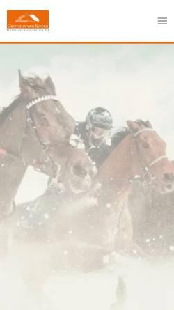 Vorschau der mobilen Webseite www.mittelstandsmarketing.de, Grothus van Koten Mittelstandsmarketing KG