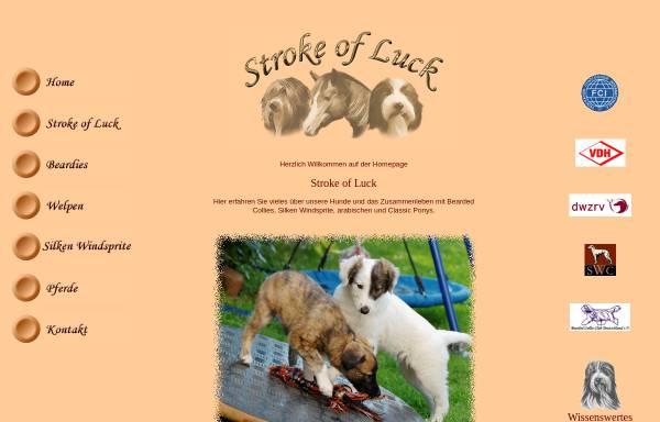 Vorschau von www.bearded-collie.de, Stroke of Luck