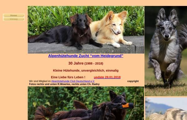 Vorschau von www.alpenhuetehunde.de, Alpenhütehunde