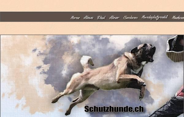 Vorschau von www.schutzhunde.ch, Basicdogs