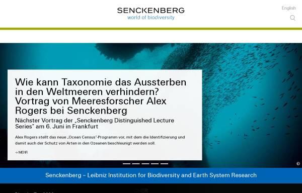Vorschau von www.senckenberg.de, Senckenberg Museum