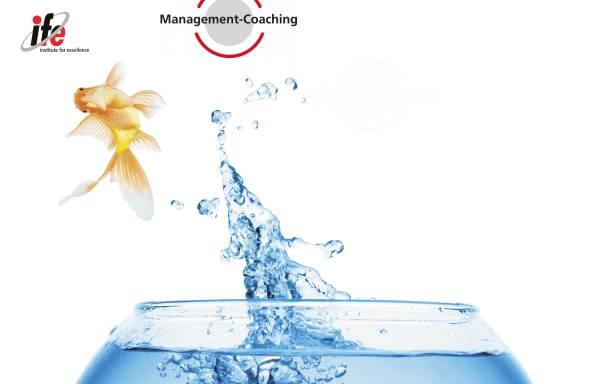 Vorschau von www.ife-web.com, Institute for eXcellence - Jürg Wilhelm