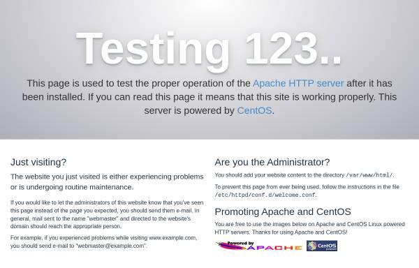 Vorschau von www.energetische-therapie.ch, Susanna Bareth