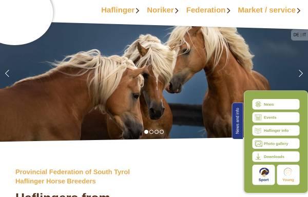 Vorschau von www.haflinger-suedtirol.com, Südtiroler Haflinger Pferdezuchtverband