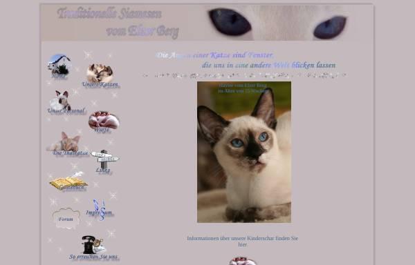 Vorschau von www.traditionelle-siamkatze.de, Vom Elzer Berg