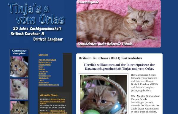 Vorschau von www.tinjas.de, Tinja's und vom Orlas