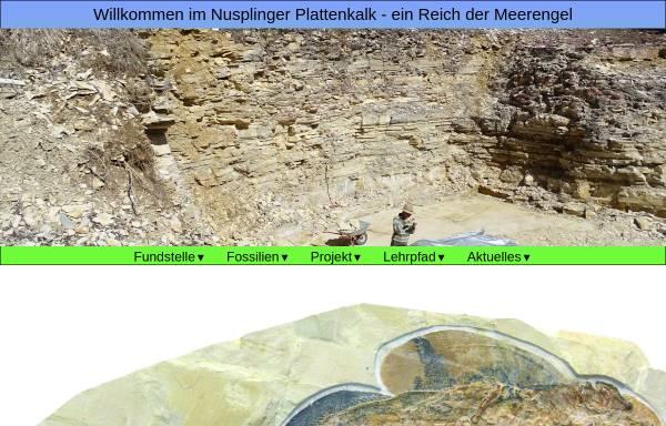 Vorschau von www.plattenkalk-nusplingen.naturkundemuseum-bw.de, Forschungsteam Nusplinger Plattenkalk