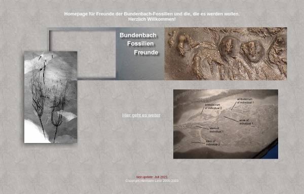 Vorschau von www.bundenbachfossilien-freunde.de, Freunde der Bundenbachfossilie