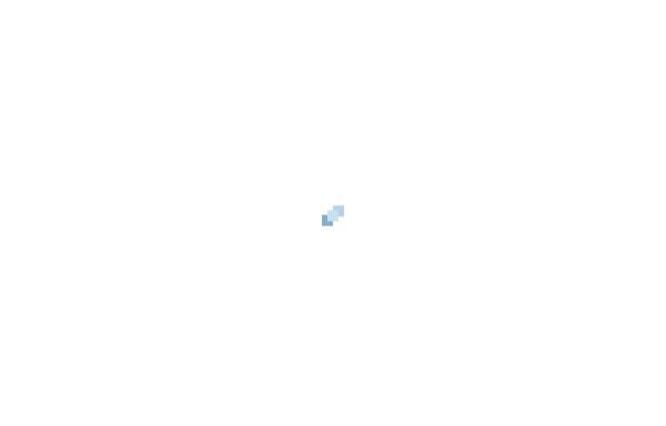 Vorschau von www.stiftungsagentur.de, DS Deutsche Stiftungsagentur GmbH
