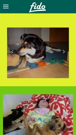 Vorschau der mobilen Webseite www.in-balance-mit-tieren.de, In Balance mit Tieren - Claudia Kranz