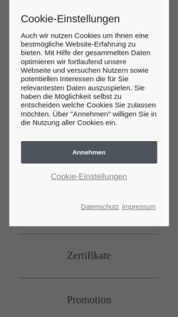Vorschau der mobilen Webseite www.sti-mba.de, Steinbeis-Hochschule Berlin