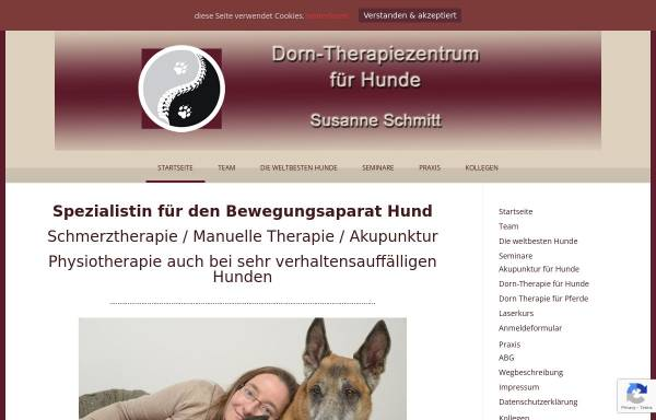 Vorschau von www.dorn-therapiezentrum.de, Dorn-Therapiezentrum