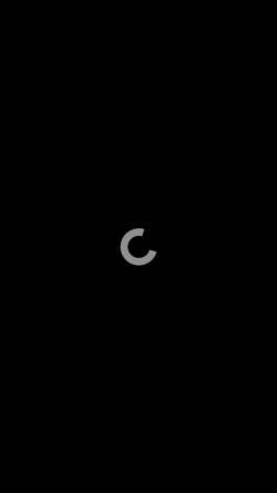 Vorschau der mobilen Webseite www.ballonartist.de, Schlegel, Andor