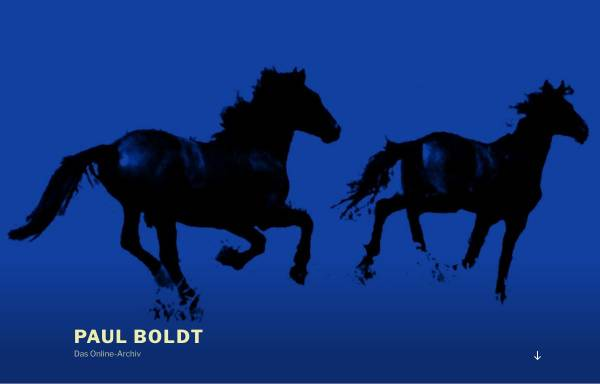 Vorschau von www.paul-boldt.de, Paul Boldt Online-Archiv