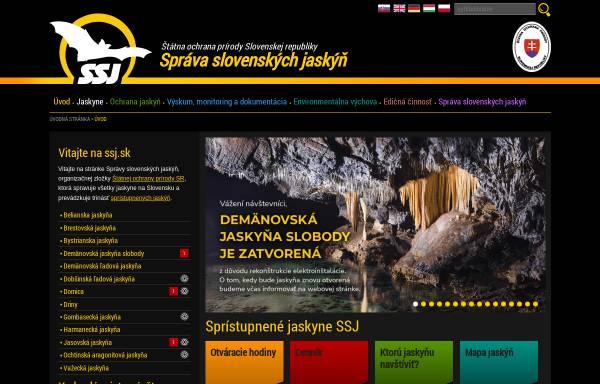 Vorschau von www.ssj.sk, Schauhöhlen der Slowakei