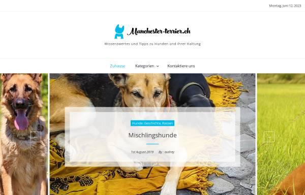 Vorschau von www.manchester-terrier.ch, Vom Alpenrhein
