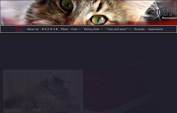 Vorschau von www.justforfuncattery.de, Just For Fun