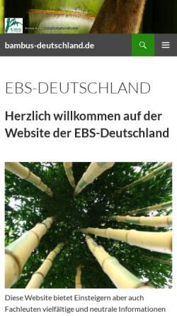 Bambus Verzeichnis Pflanzen Garten Zuhause