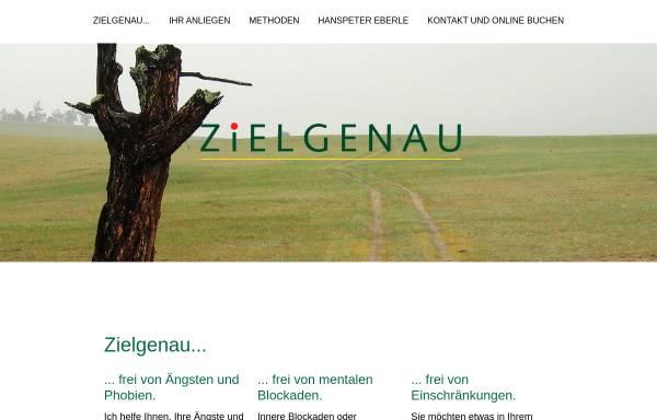 Vorschau von www.zielgenau.ch, Zielgenau Morphogenetic Reality Design