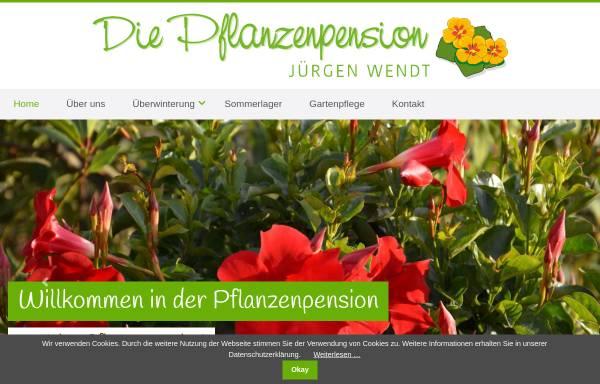 Vorschau von www.wendt-gartenbau.de, Wendt Gartenbau