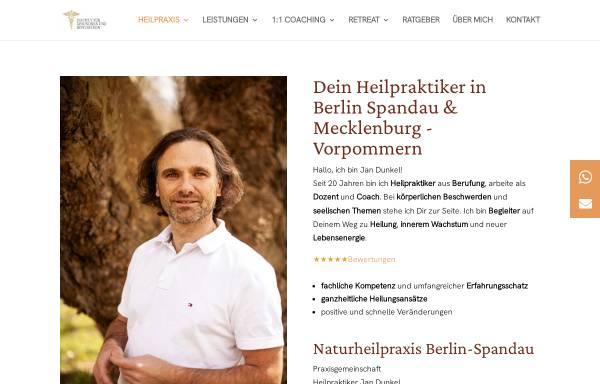 Vorschau von www.gesundsein-bewusstsein.de, Institut für Gesundsein und Bewusstsein