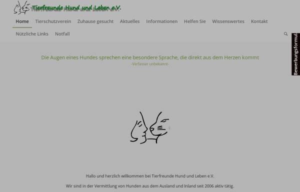 Vorschau von www.tierheim-hund.de, Kampfteddy