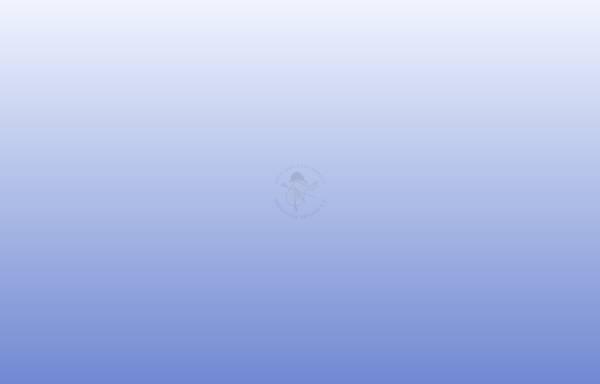 Vorschau von www.rfv-weisenheim.de, Reit- und Fahrverein Weisenheim