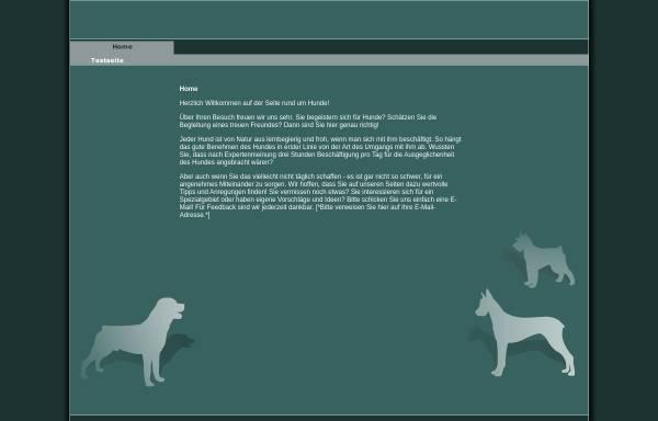 Vorschau von www.web-td.de, web-td, Inhaber Till Schoenrock