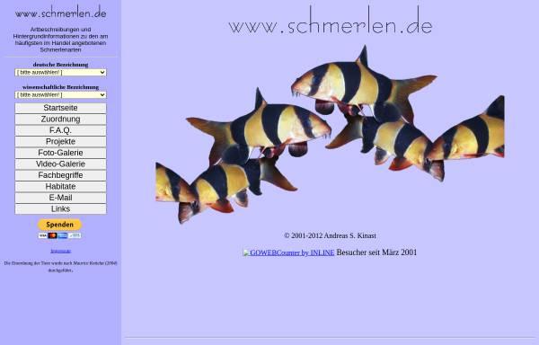 Vorschau von www.schmerlen.de, Schmerlen