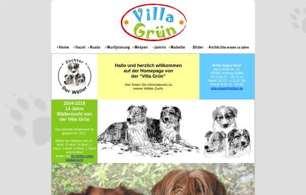Vorschau von www.villagruen.de, Villa-Gruen