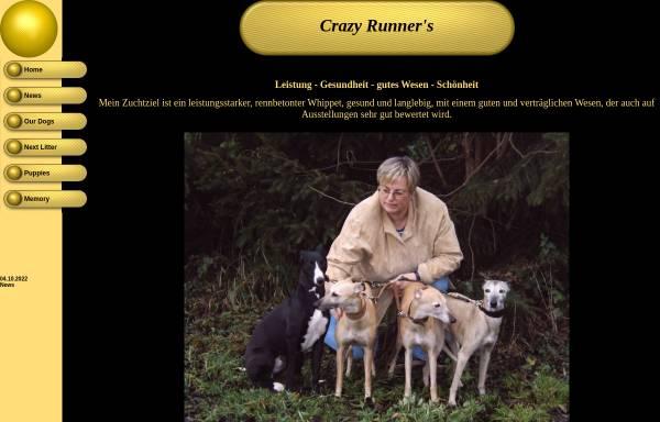 Vorschau von www.crazy-runner.de, Crazy Runner's