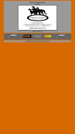 Vorschau der mobilen Webseite www.druantia.ch, Druantias Whippets