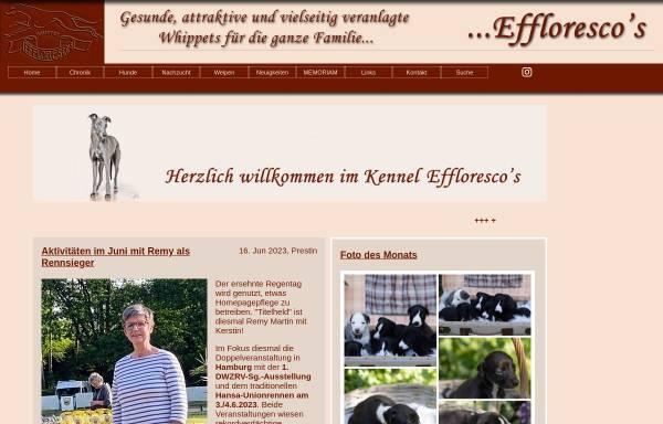 Vorschau von www.efflorescos.de, Effloresco`s