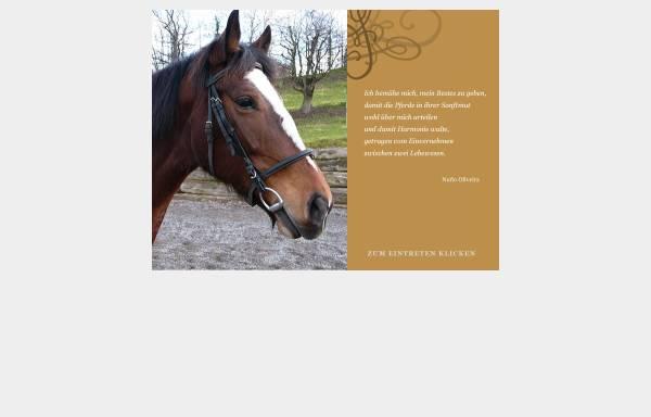 Vorschau von www.pferdewissen.ch, Pferdewissen.ch