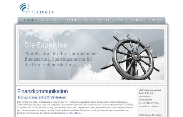 Vorschau von www.effizienza.de, EFFIZIENZA Management GmbH & Co. KG