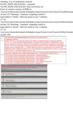 Vorschau der mobilen Webseite www.netconsult.ch, NetConsult AG