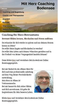 Vorschau der mobilen Webseite www.tsy.de, Schladt, Thomas