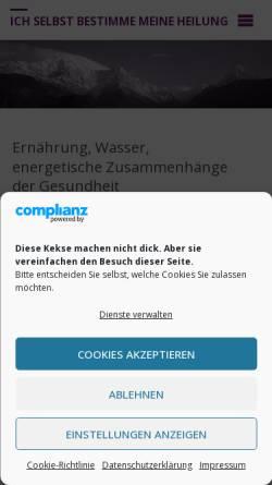 Vorschau der mobilen Webseite www.isbmh.com, Hübner, Michael