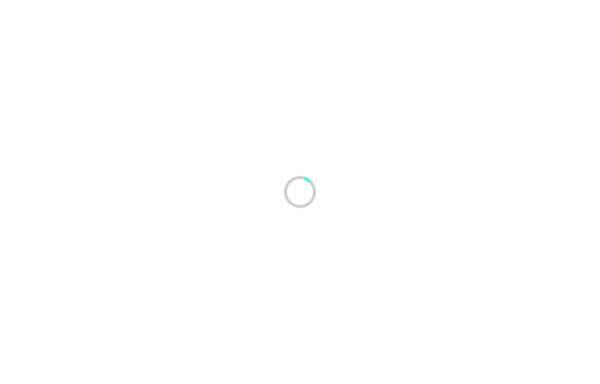 Vorschau von www.papbedarf.ch, Papeterie Schmidiger