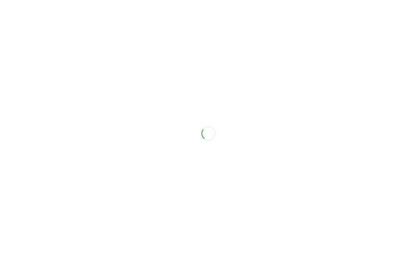 Vorschau von www.plattsalat.de, Plattsalat e.V.
